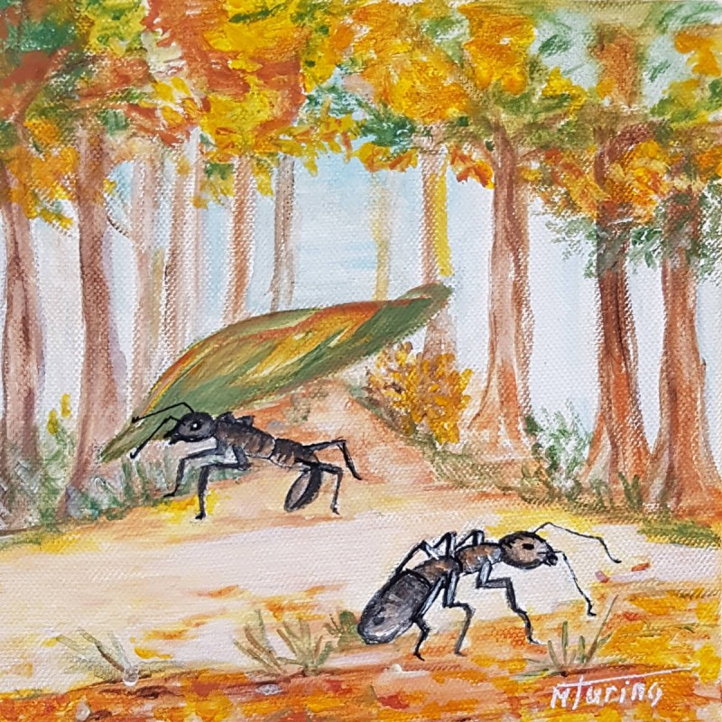Monique Turino - la voix des contes - Les fourmis dans la forêt d'automne