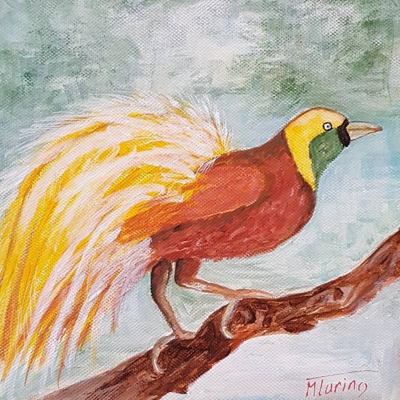 Monique Turino - la voix des contes - L'oiseau de paradis